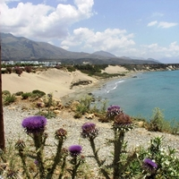 Orthi Ammos Beach